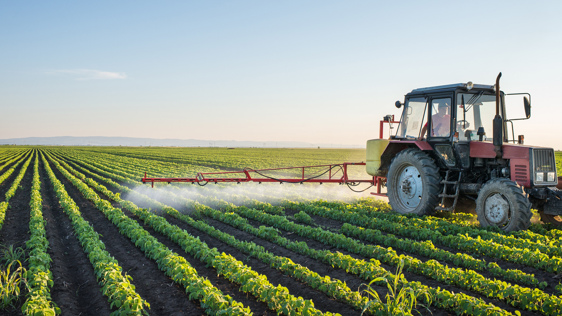 Thompson Spraying LTD: Crop Spraying, Custom Spraying and Agriculture Crop Spraying in Lacombe, Red Deer and Blackfalds